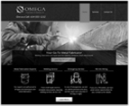 Website Design  Servivces For Fabrication and Welding Services